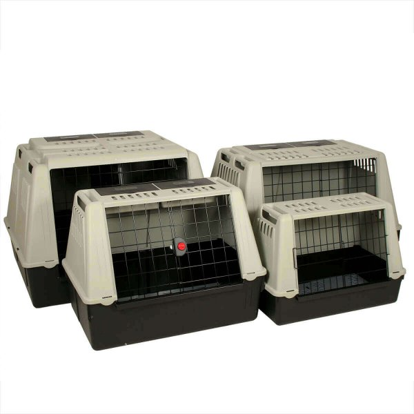 cage de transport chien