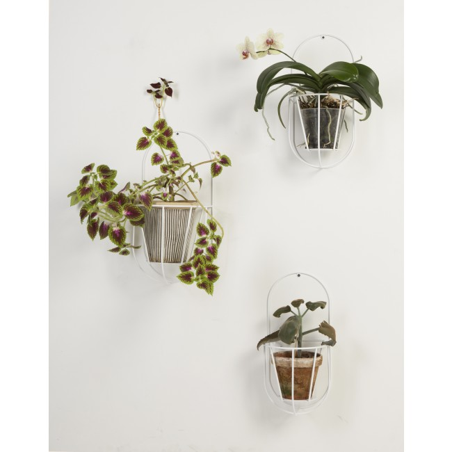 porte plante mural