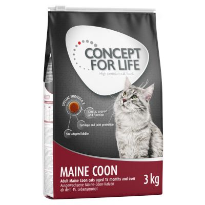 croquette maine coon