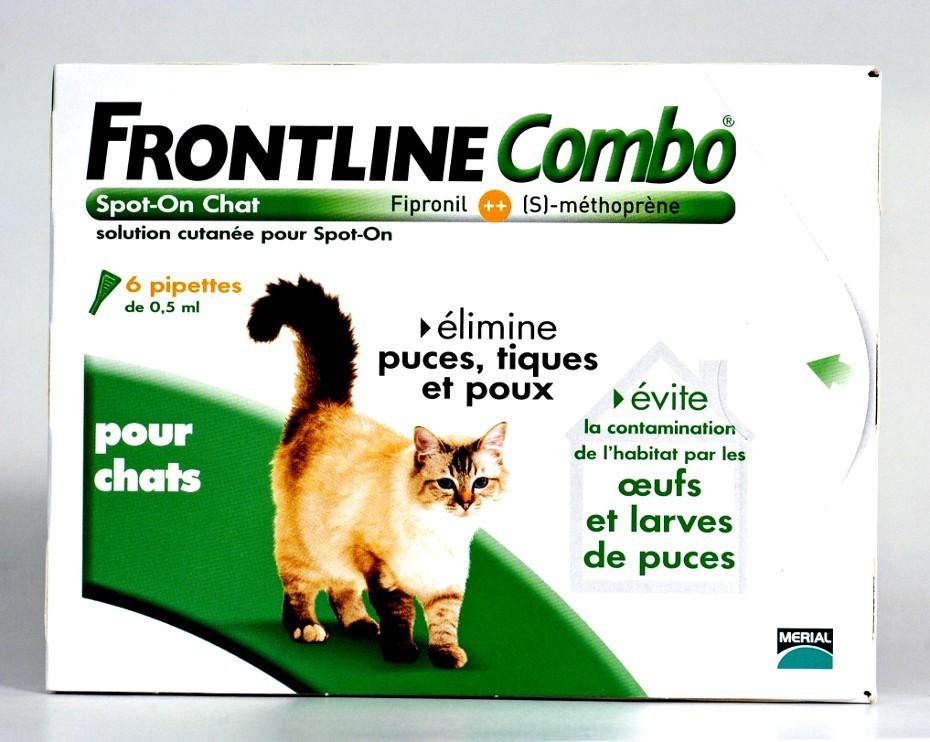 frontline combo chaton 3 mois