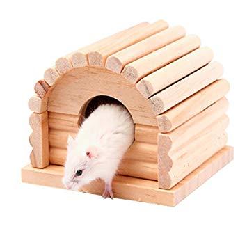 jouer pour hamster
