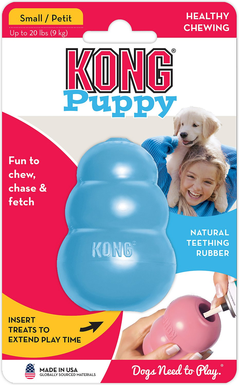 kong puppy