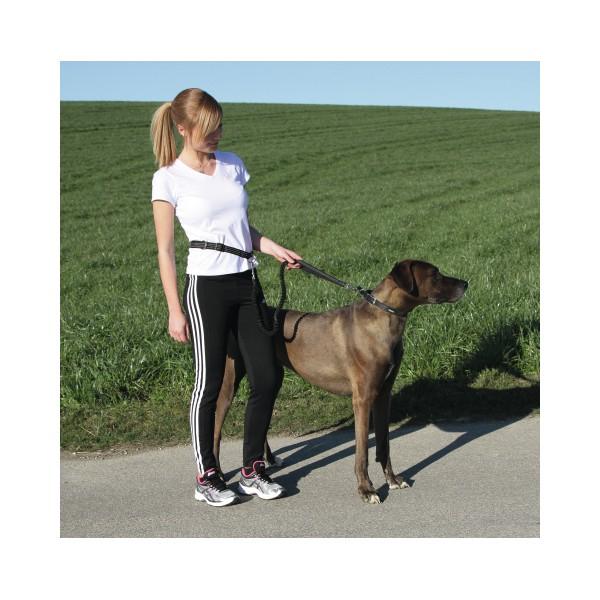 laisse pour jogging avec chien