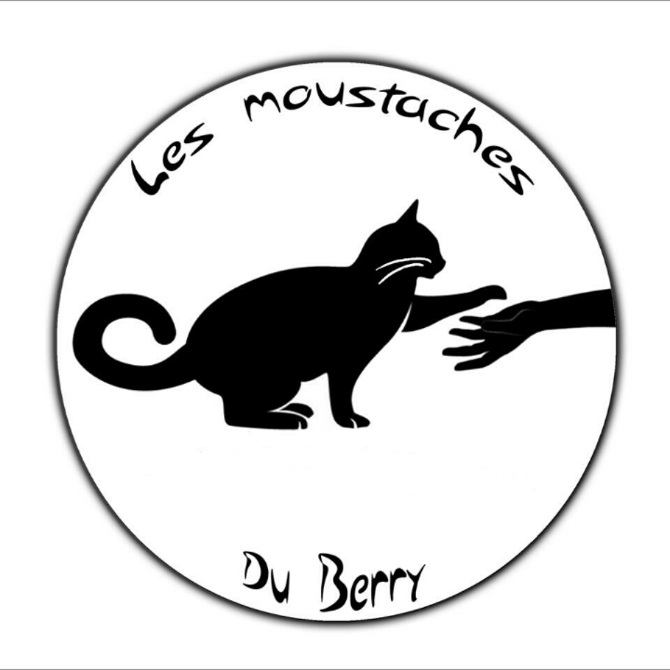 les moustaches du berry