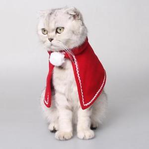 manteau pour chat