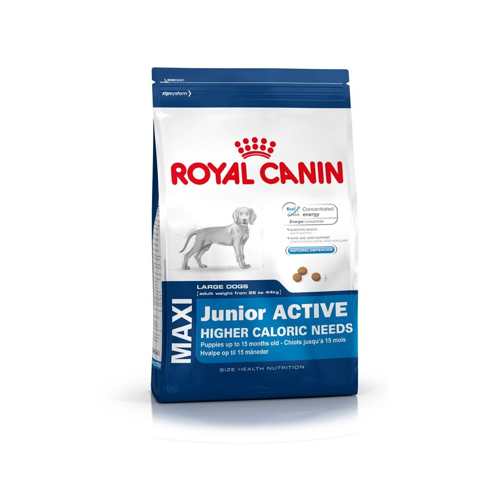 royal canin maxi junior active