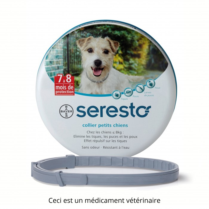 seresto collier chien