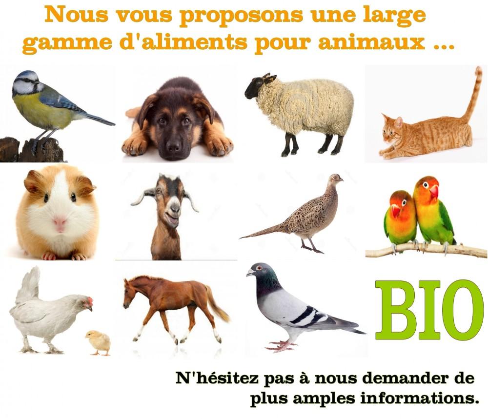 site nourriture animaux