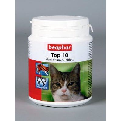 vitamine pour chat