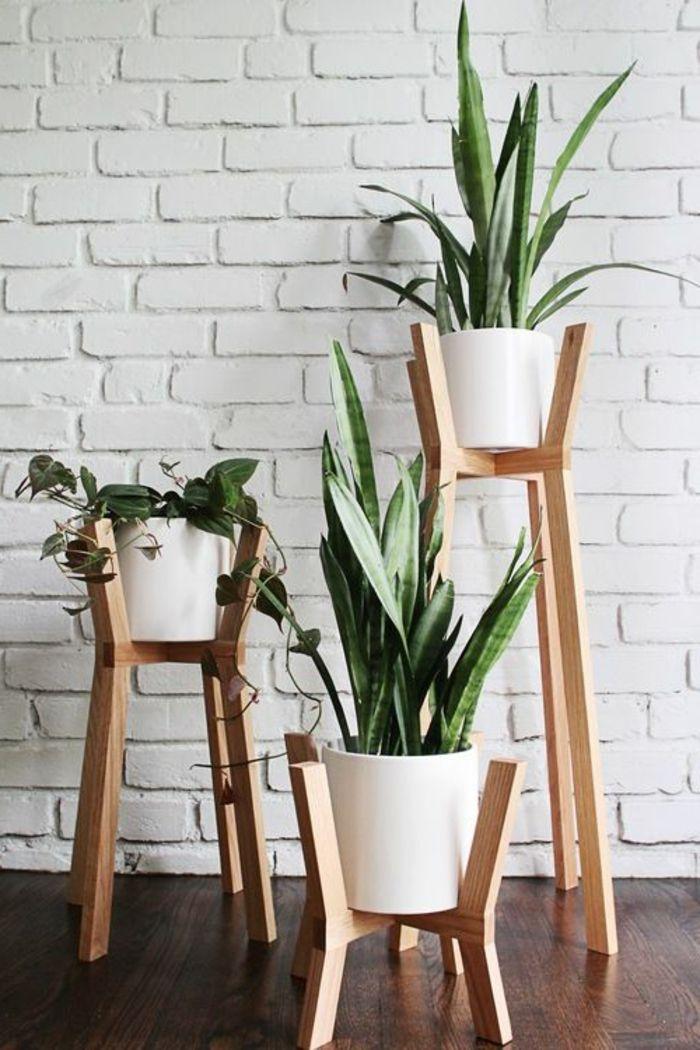 support plante intérieur