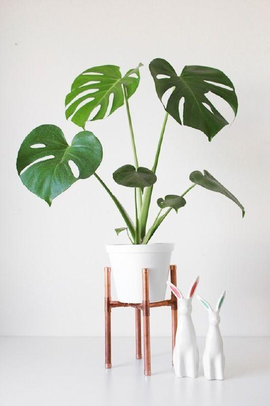 support pour plantes d intérieur