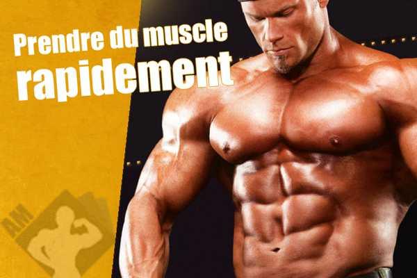 prendre du muscle rapidement