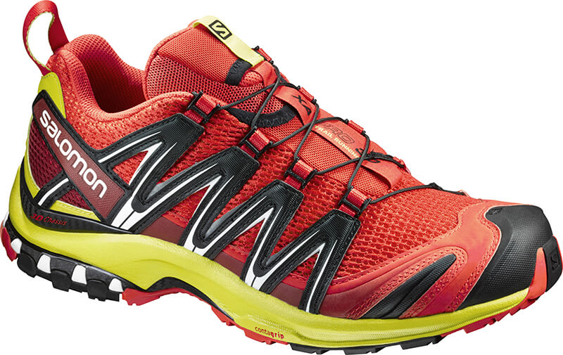 trail chaussure